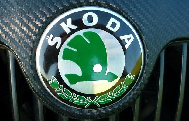 Заправка кондиционера Шкода (Skoda)